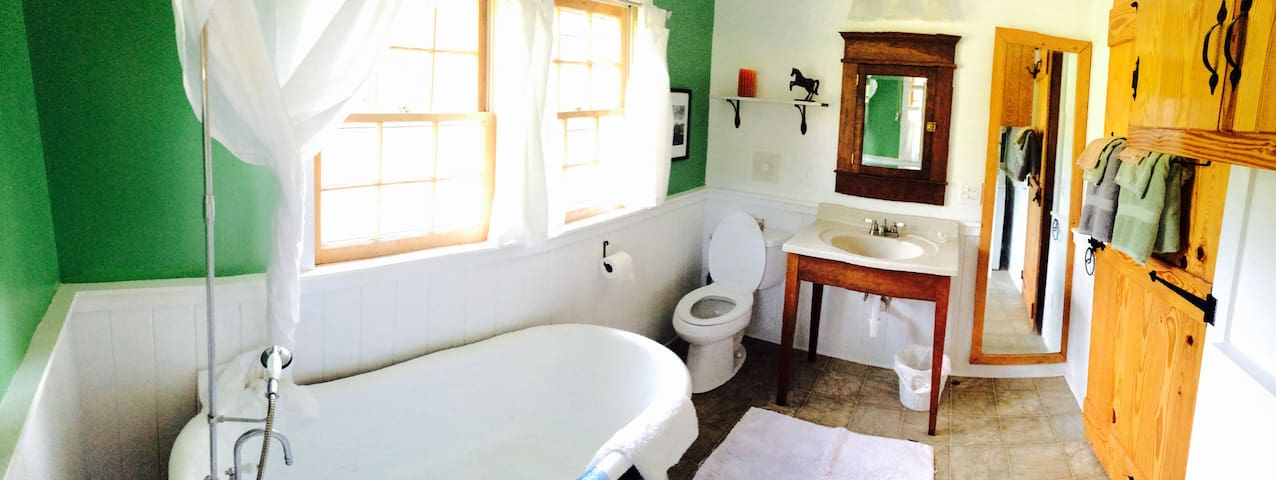 The Cottage at Mulberry Springs - Stanardsville - Hus