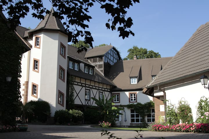 Le Moulin Vollach (22 guests max) - Ingwiller - Hus