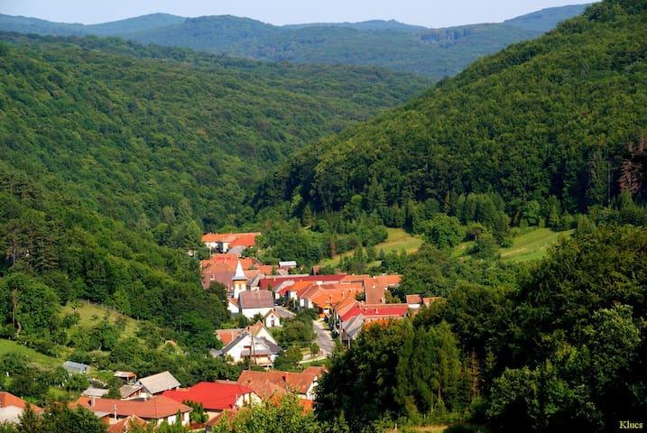 A place for nature lovers - Répáshuta - Leilighet