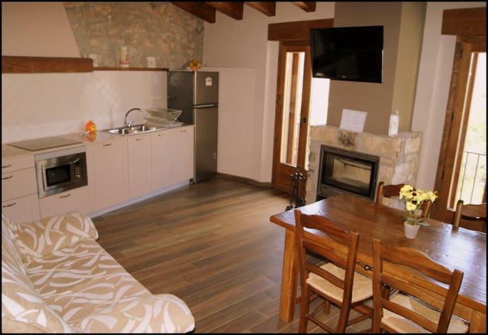 Apartaments Rurals Cal Remolins x4 - Coll de Nargó - Daire