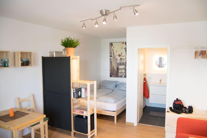 Gemütliches Apartment - Regensburg - Hus
