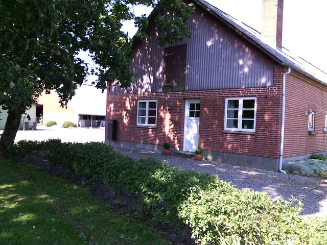 primitiv værlse - Løgumkloster - Outros
