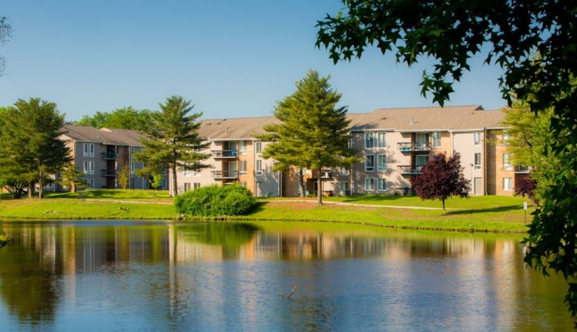 Upscale 1B for Pope Visit - Voorhees Township - Apartment