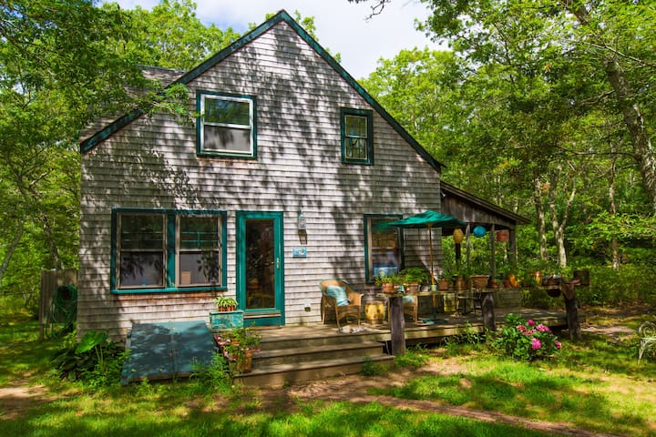 Lovely, sunny, large room for rent - West Tisbury