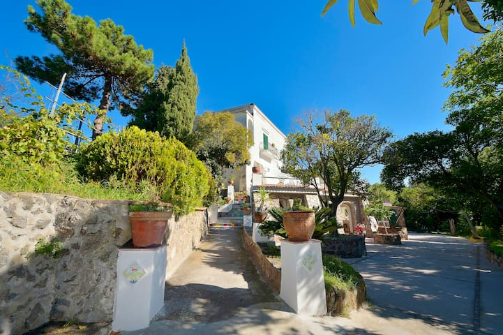 Exclusive Villa apartment-1 Ischia - Barano d'Ischia - Daire
