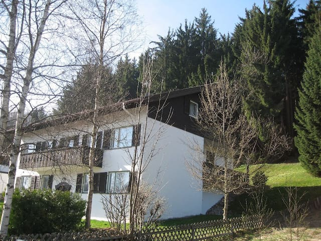 nice flat in the alps - Bad Kohlgrub - Appartement