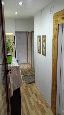 Hostel Zrenjanin,5€ day - Zrenjanin - Bed & Breakfast