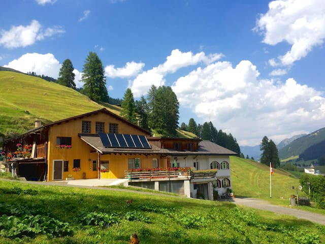 Small-Animal Farm (3 Bedroom Apt) - Davos Frauenkirch - Departamento