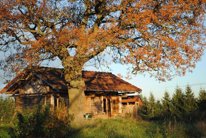 Lovely wooden lock cabin - Vernusse - Chalet
