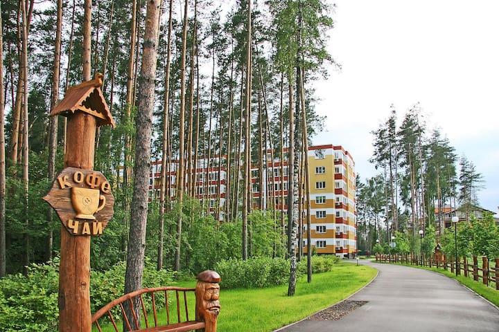 Городской комфорт в сосновом лесу - Ногинский район - Appartement