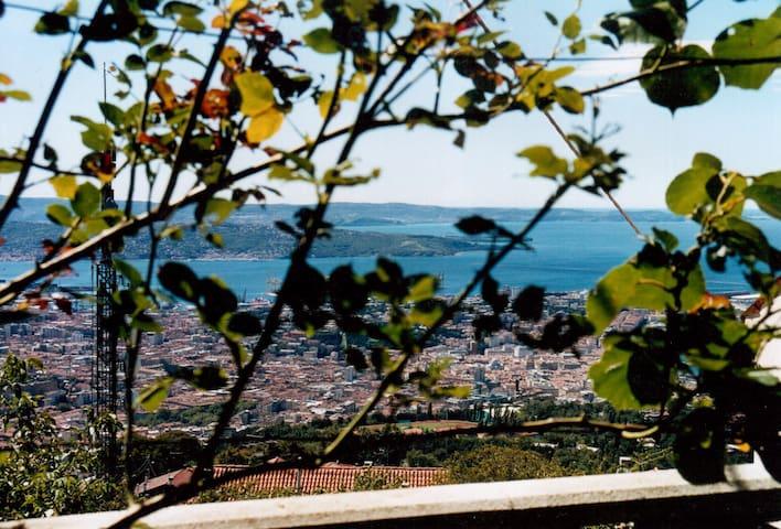 B&B PANORAMA: delizia per gli occhi - Trieste - Casa