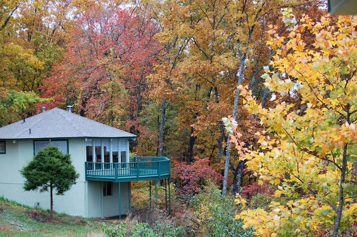 Nana's Mountain Farm - Pikeville - Houten huisje