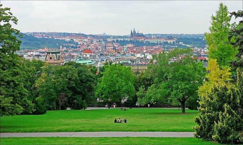 Best location with private bathroom - Praha - Huoneisto