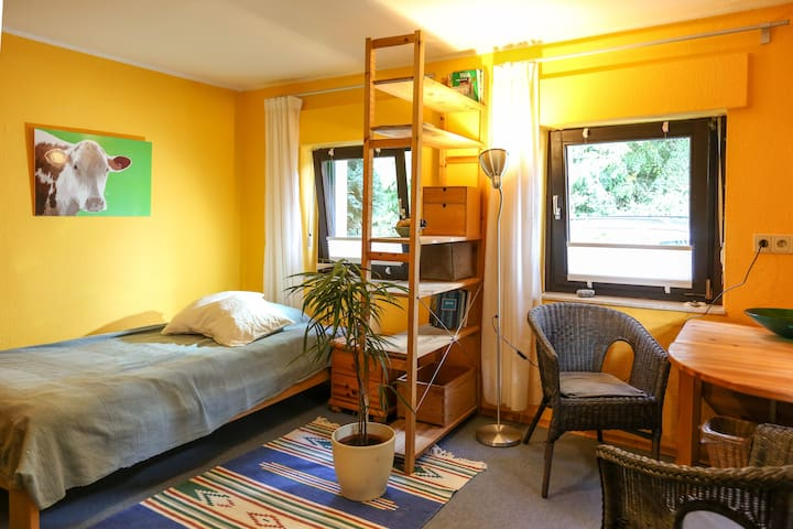 Nice room near forest and Rhine river - Bonn - Hus