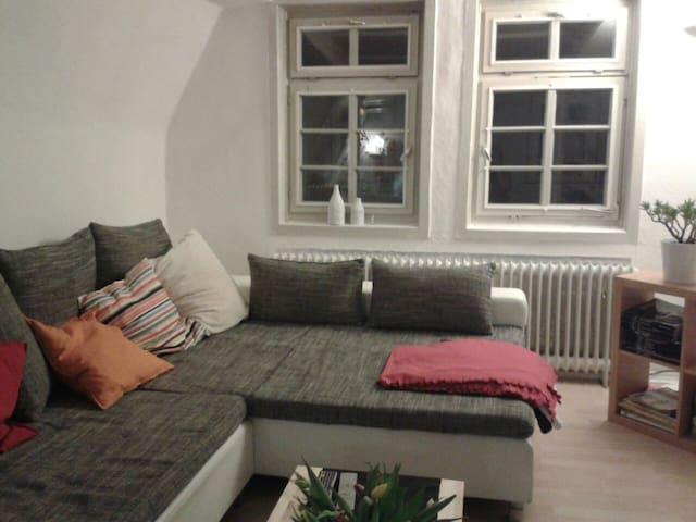 Zentrale Altbauwohnung mit Flair - Marburg - Appartement