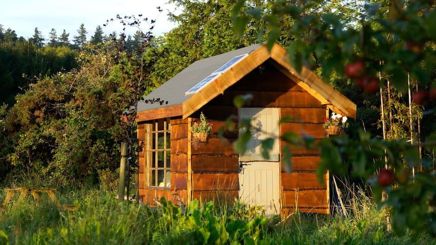 Cosy Secluded Cabin - Rathdrum - ที่พักพร้อมอาหารเช้า