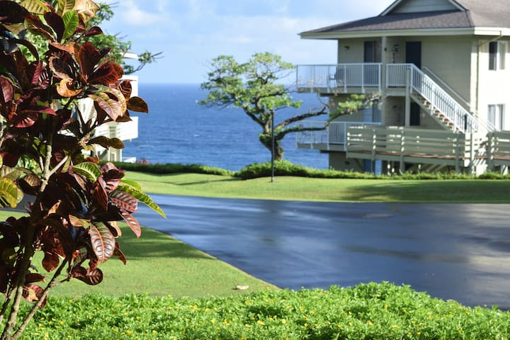 Ocean and Waterfall Views with A/C - Princeville