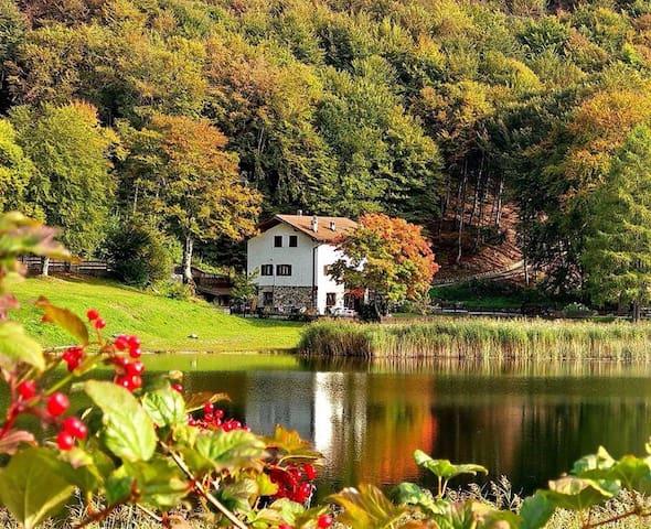 La Casa sul Lago  The Lake House - Lagolo