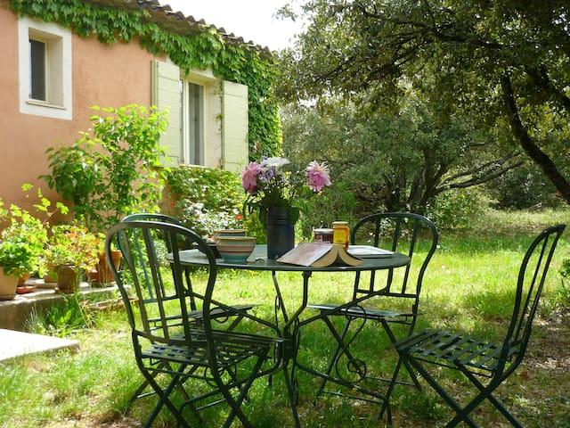 Mitten in der Provence - Bonnieux - Ev