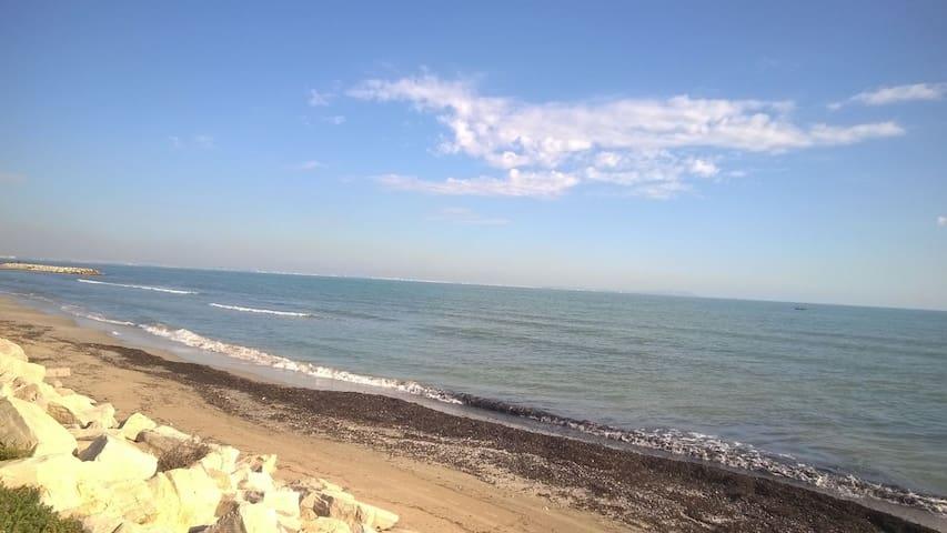 Beau F2  bord de plage - Hammam Lif - Daire