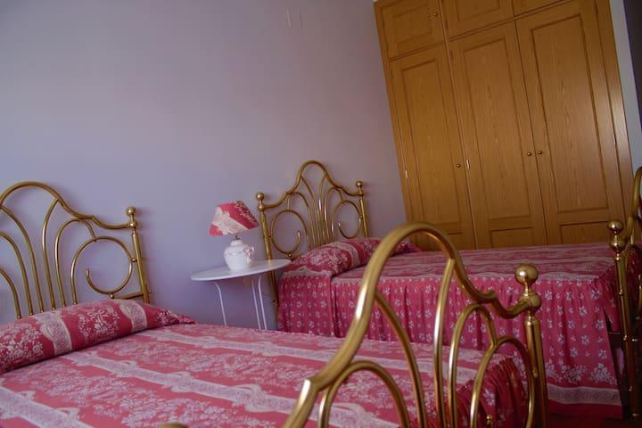 Habitación doble con baño propio. - Ávila - Appartement