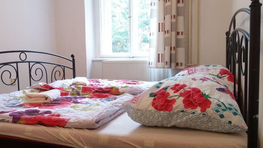 Simple, quiet room in the center - Prag