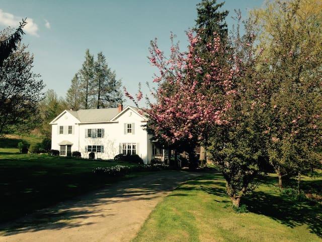 Possibility Farm! Chimney room - Frostburg - Casa