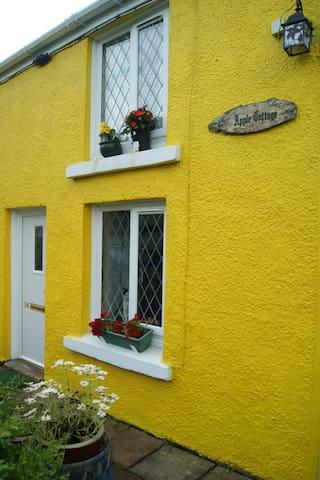lovely traditional stone cottage - Gwaun-Cae-Gurwen - Casa