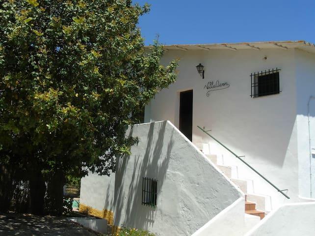 Villa Aurora - Jimena de la Frontera