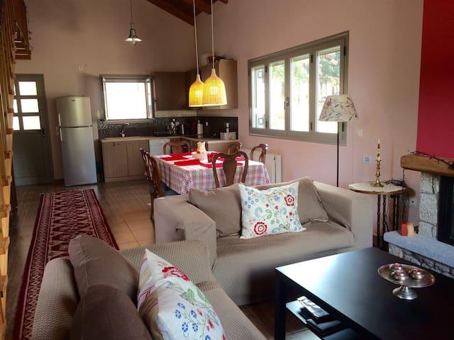 LOVELY HOUSE 2 NEAR DELPHI/ARACHOVA/HOSIOS LOUKAS - Δίστομο - Дом