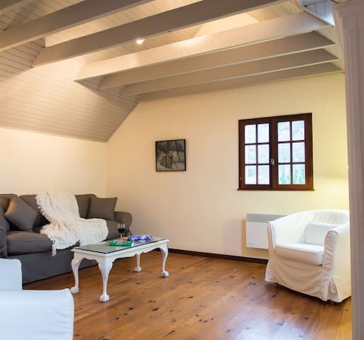 Peaceful, Pretty Pyrenees Cottage - Issor - Huis