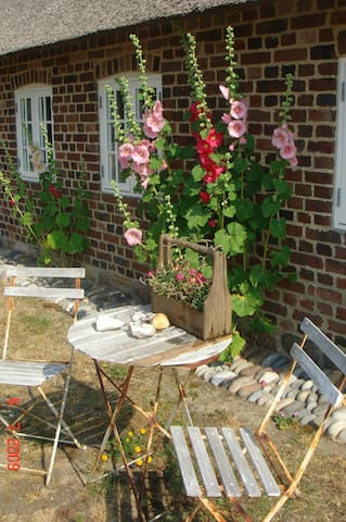 Lovely holiday home by North Sea - Ulfborg - 公寓