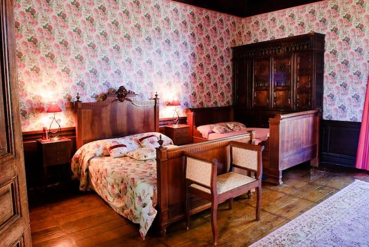 Hydrangea Suite at Chateau Ribagnac - Saint-Martin-Terressus - Şato