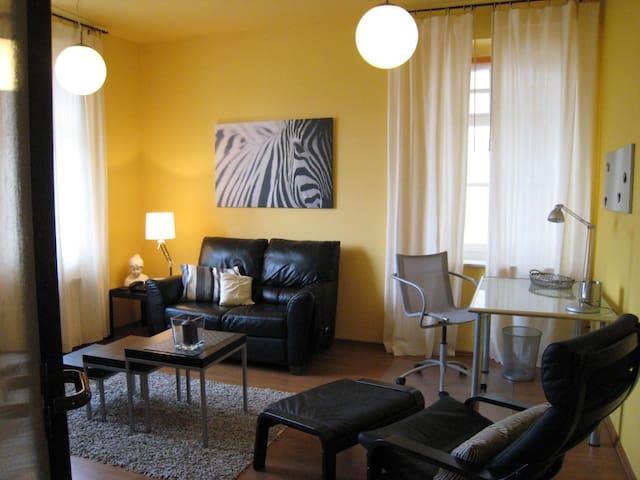 liebevoll eingerichtetes Apartment - Bitterfeld-Wolfen - Appartement