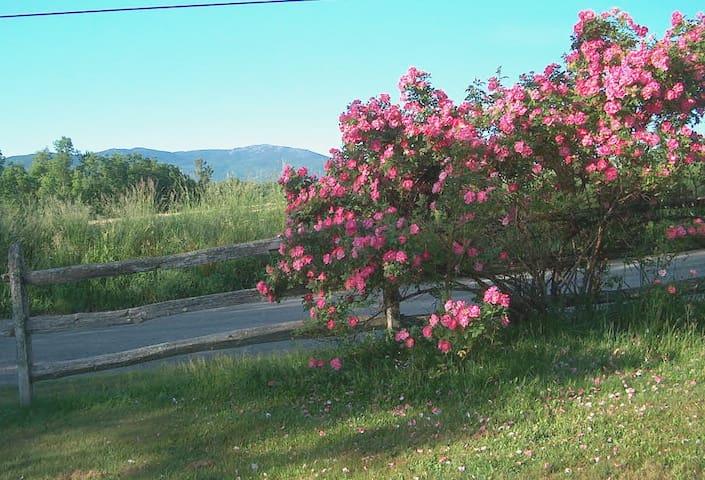 Beautiful country retreat - Harrisville - Leilighet