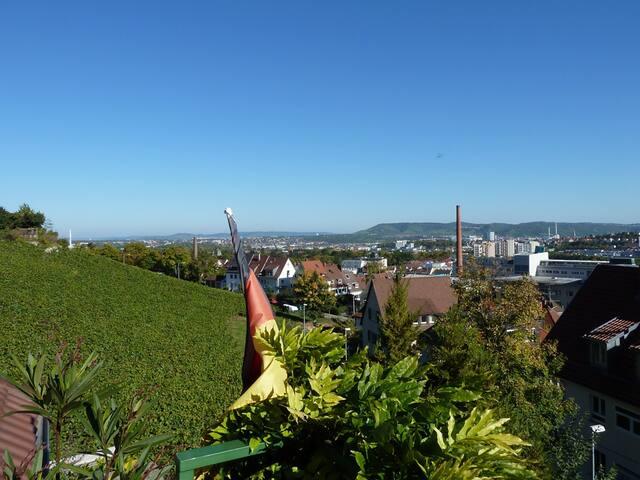 Flair en vue: vignoble + ville - Stuttgart - Bed & Breakfast