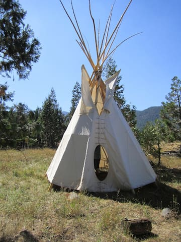 Tipi retrait in the wilderniss - Weed