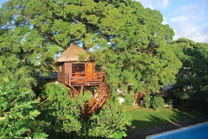 La Cabane dans l'Arbre. Tree Lodge - Belle Mare - Szoba reggelivel
