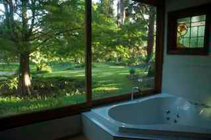 Enchanted Woods Spa Cottage - Main Arm - Cabaña