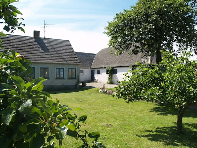 A Gem on the Danish countryside - Bagenkop