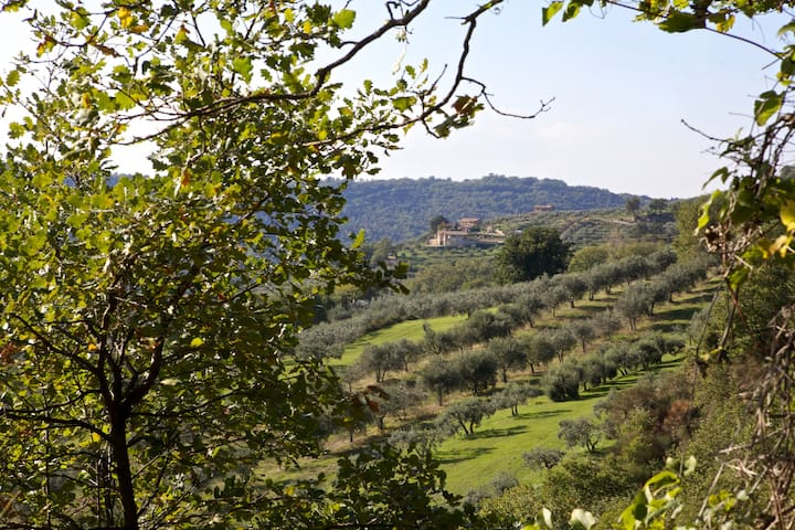 Private House Umbria untouched countryside - Gualdo Cattaneo - Appartement