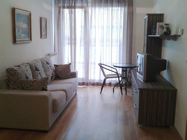 nice apartment Arluzepe in Navarre - Etxarri-Aranatz - Appartement