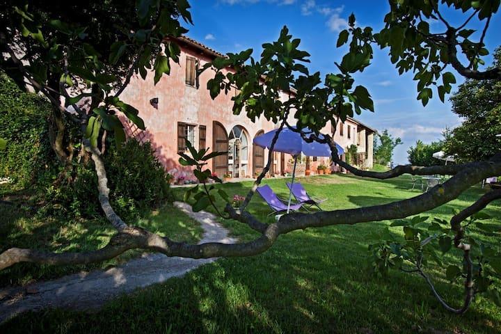 Cascinarosa b&b relax in Monferrato - Grazzano Badoglio - Appartement