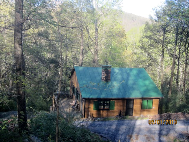 Bear Ridge, a 100 Year Old Cabin by Nat'l Forest - HINTON - Cabaña
