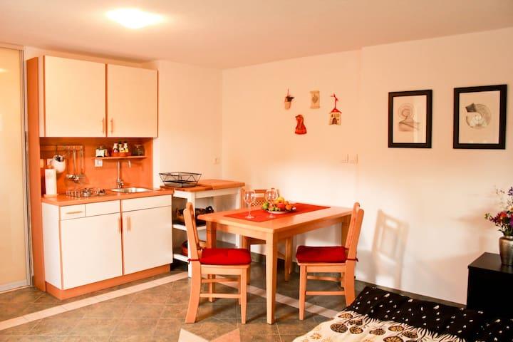 Cozy studio Apartma Sofia - Bled - Hus