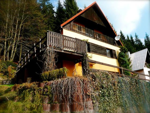 Comfortable cottage in the Mountain - Jáchymov - Hytte (i sveitsisk stil)