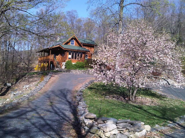 Log Home on 7 mountain acres  - Warwick - Casa