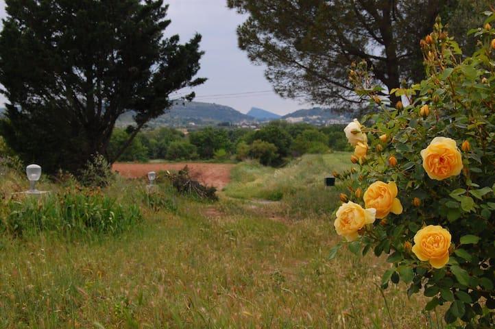 Small farmhouse in the Languedoc - Ceyras - Ev