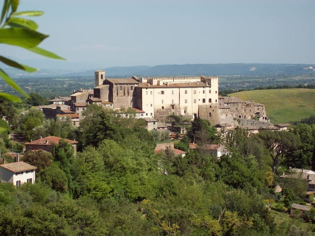Hilltop Village Home with Pool and Gardens - Roccalvecce - 獨棟