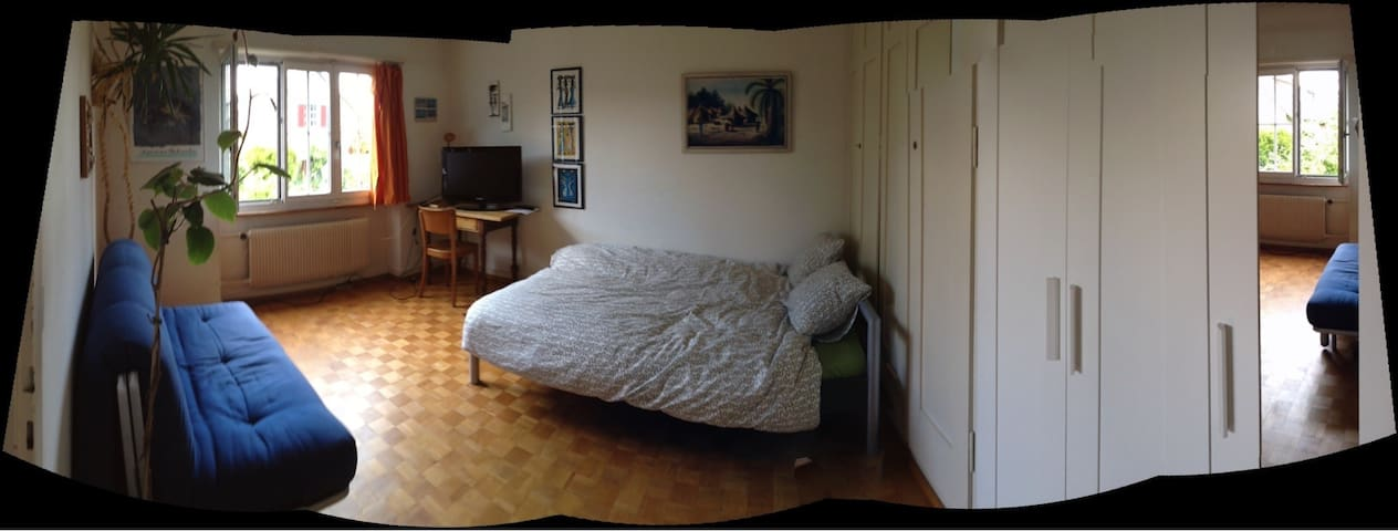 Room in big cosy apartment for 1-3p - Berne - Leilighet